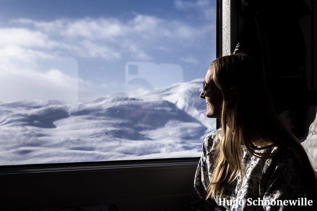 Bergensbanen treinreis