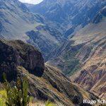 Reisdagboek #3: hiken in de Colca Canyon