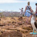 Reisdagboek #16: eerste week op de Galápagoseilanden