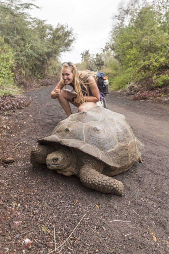 Manouk met een reuzenschildpad op een pad op Isla Isabela