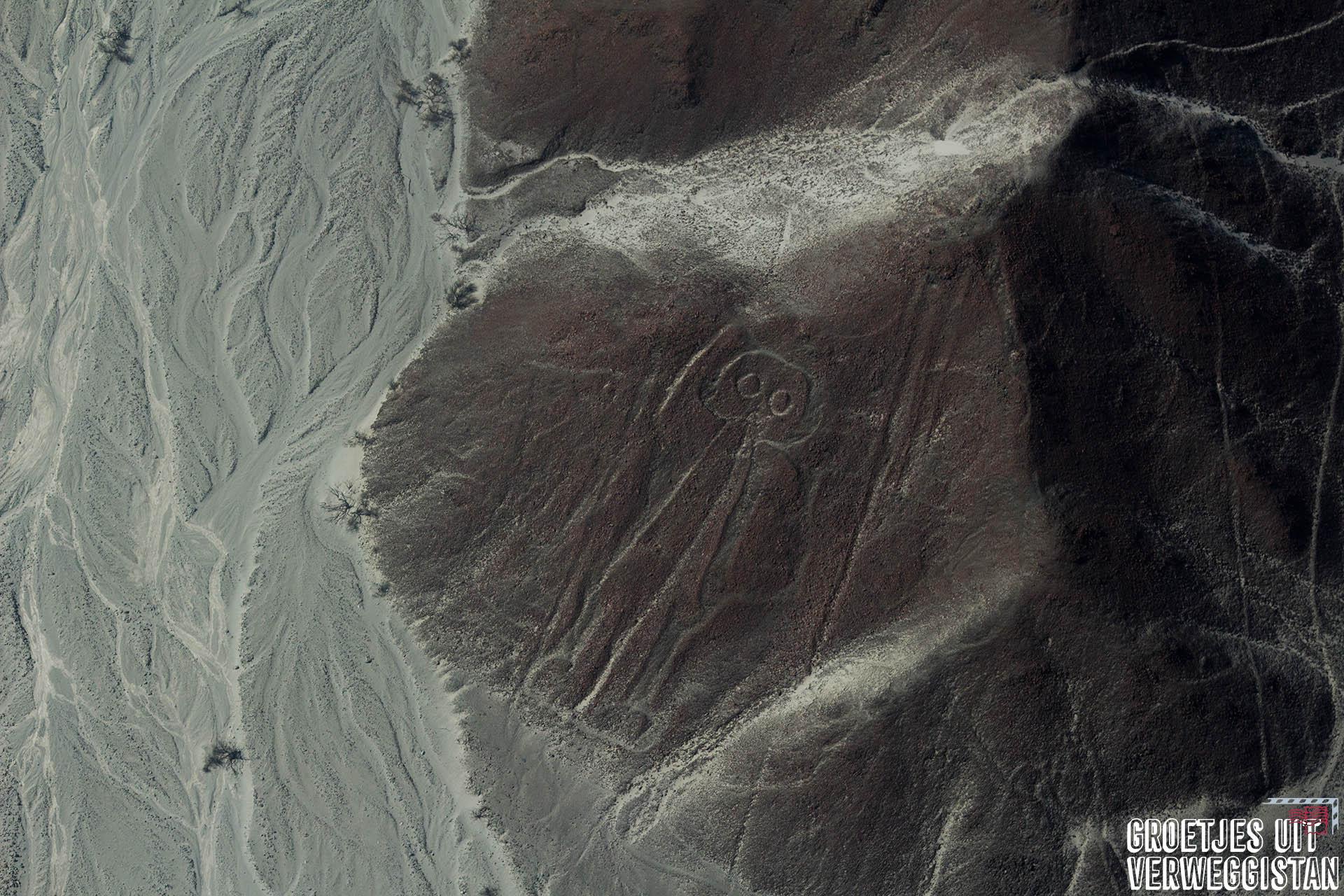De lijnen op de grond vormen een mannetje met een hand in de lucht: de astronaut van Nazcalijnen.