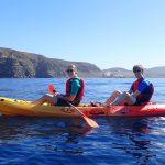 Kajakken met dolfijnen op Tenerife