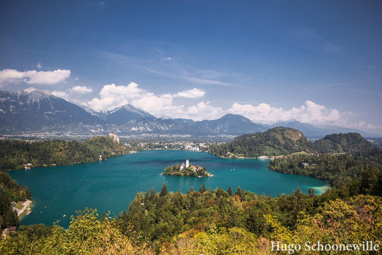 Uitzicht over het Meer van Bled, met in het midden een eilandje met kerkje en op de achtergrond bergen.