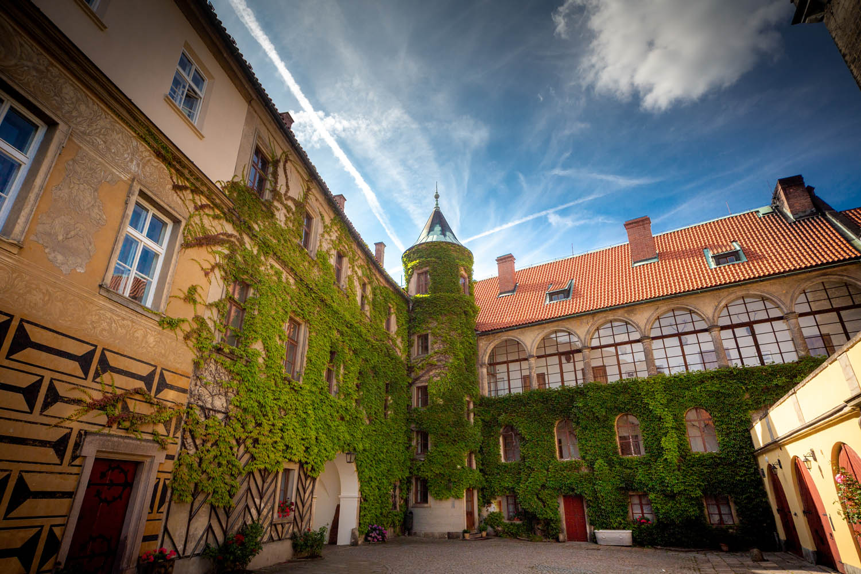 Met bladeren bedekte Rapunzel toren op de binnenplaats van het kasteel in Hrubá Skála.