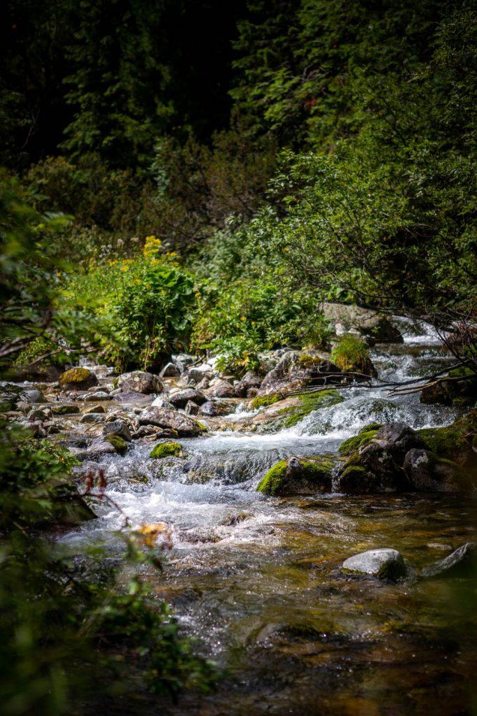 De stromende rivier na Zelené Pleso met stenen erin, ingezoomd.