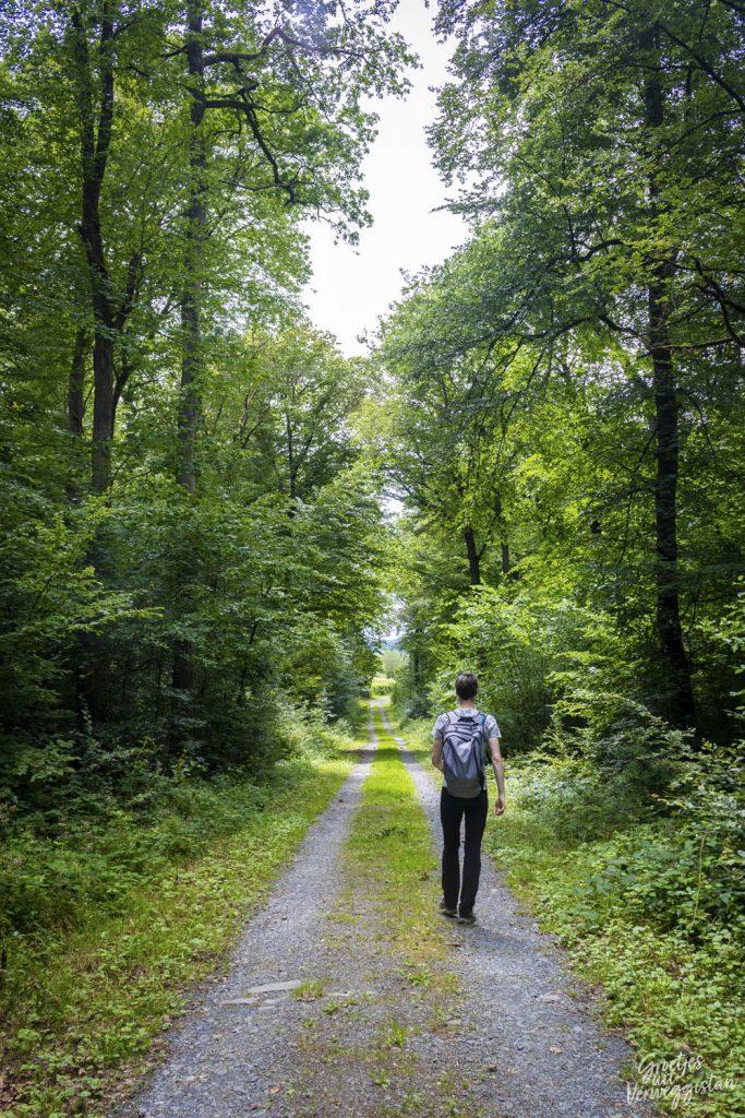 Hugo loopt over een pad tijdens de Mullerthal Trail ExtraTour A.