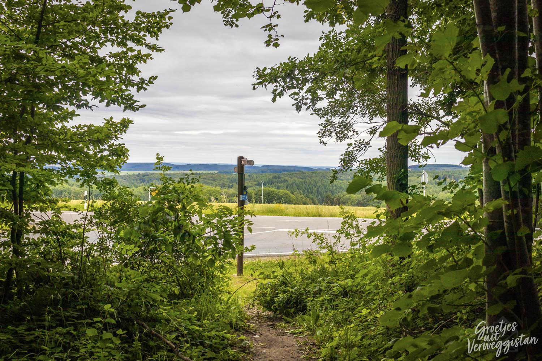 Bewegwijzering op de Mullerthal Trail ExtraRoute A vanuit het bos gezien.