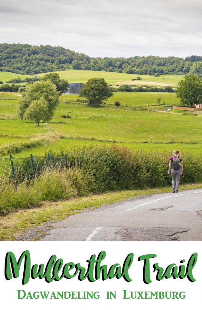 Pinterestafbeelding: Manouk loopt langs op een veld op Mullerthal Trail ExtraTour A.
