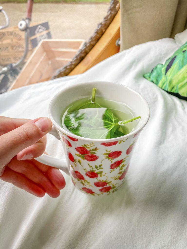 Kopje thee met watermunt van Daphne Struint