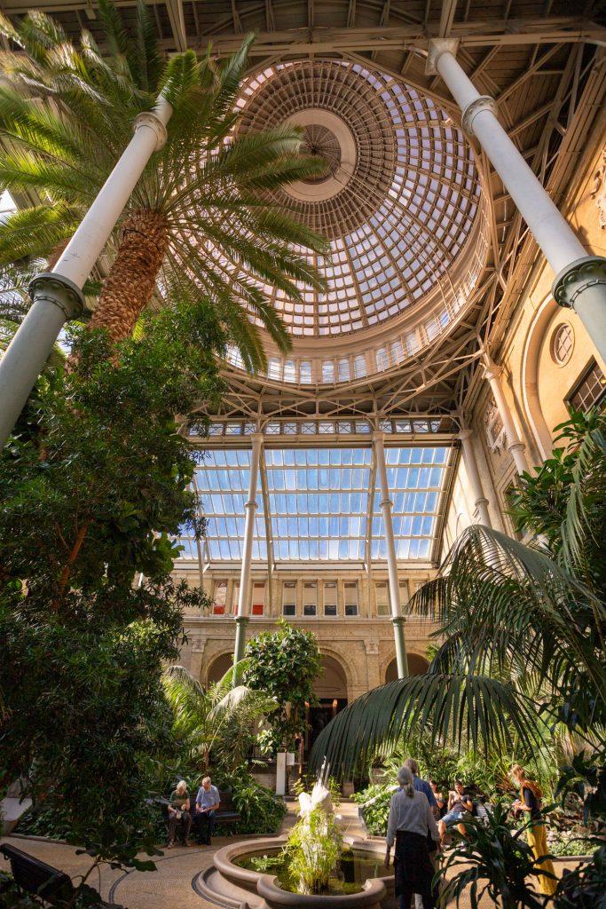 De Wintertuin van Glyptotek met de glazen koepel en palmen