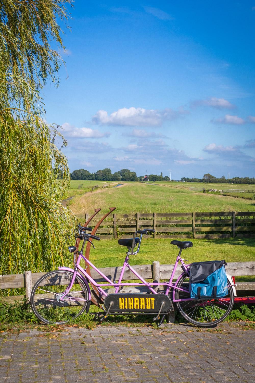 Paarse tandem met fietstassen tegen een hek bij een weiland