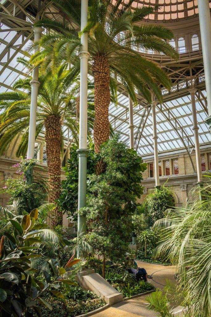 De Wintertuin met koepel en palmen in museum Glyptotek in Kopenhagen