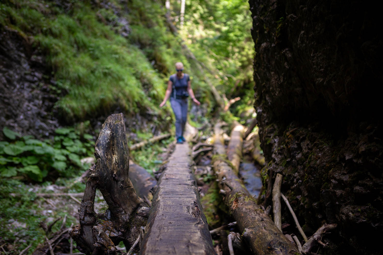 Manouk balanceert over een boomstronk in het groen van het Slowaaks Paradijs