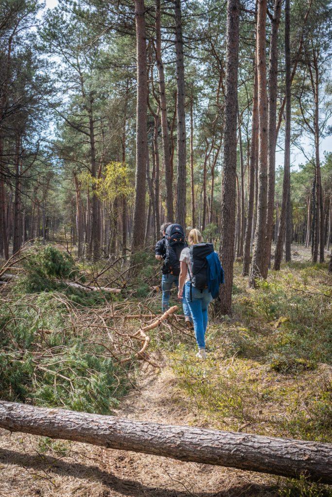 Hugo en Kelly lopen door het bos naar een Cabiner