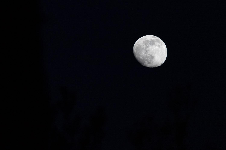 De maan is bijna vol en je ziet alle details erop met een gitzwarte lucht